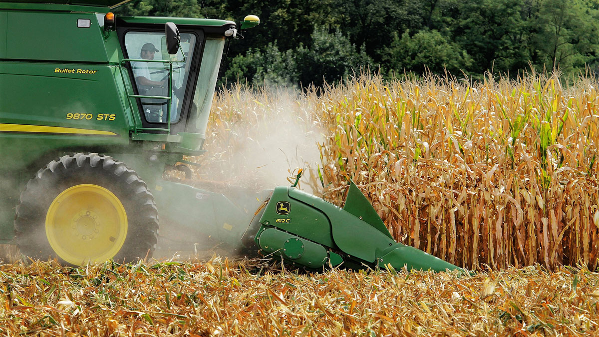 In this Aug. 30, 2011 file photo, a farmer harvests corn near Farmingdale, Ill. In a trial starting Tuesday, Nov. 3, 2015, jurors in the case between sugar processors and corn manufacturers will take up one of nutrition's most vexing debates and confront a choice common among some consumers: sugar or high fructose corn syrup?