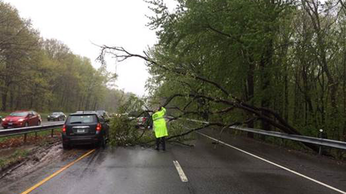 A tree fell onto the Wilbur Cross Parkway southbound in Wallingford Friday, blocking lanes of traffic.