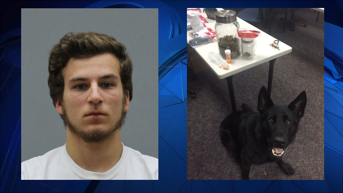 Left: Zachary Oliver, 18. Right: K9 Tengo with his finds