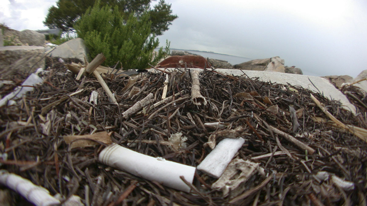 In this file photo, cigarette butts join other trash that washed up on the shore on a Florida beach.