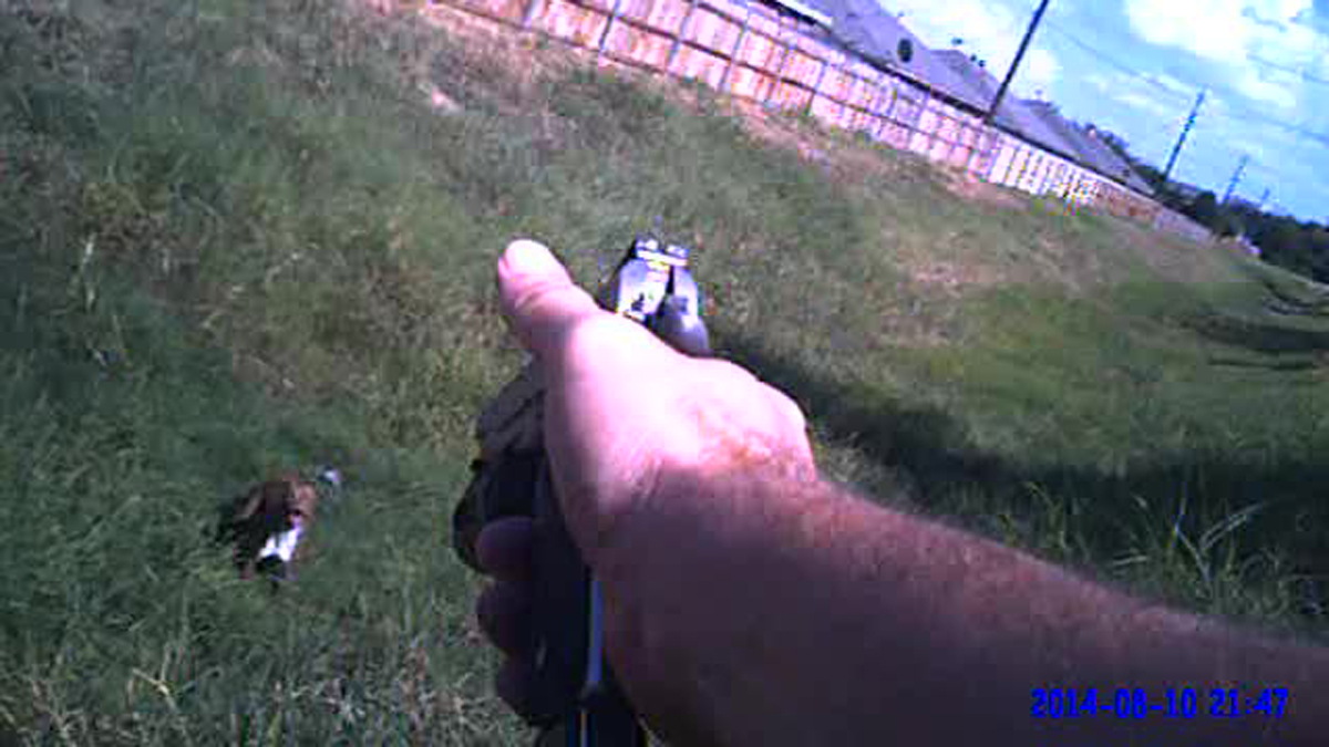 City of Cleburne officials are reviewing an incident where a police officer shot a dog after video of the shooting was released.