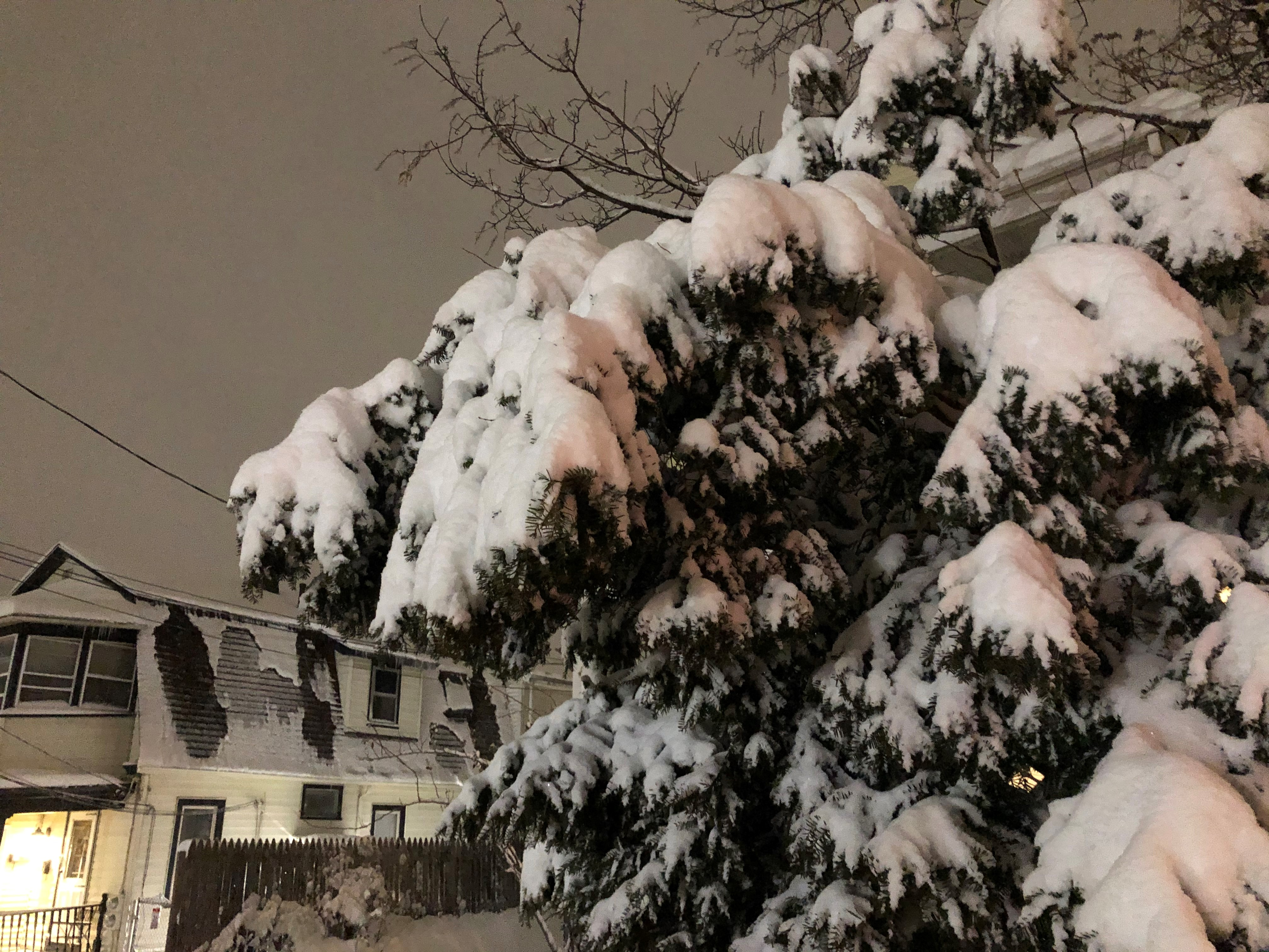 Heavy Burst of Snow Buries Parts of Connecticut
