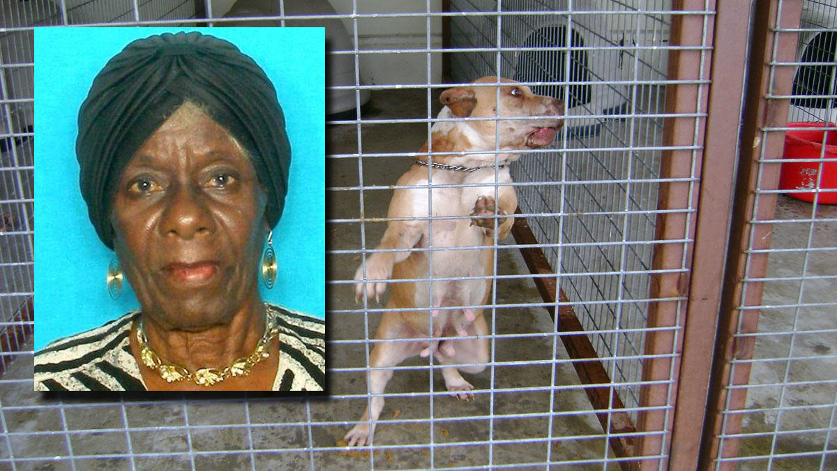 Dorothy Hamilton, inset, over a photo of one of the dogs that was taken into custody by Kaufman County Sheriff's Department following an incident where the 85-year-old woman was mauled.