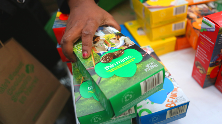 Gluten-free Girl Scout cookies are being tested in 20 areas around the U.S. to see if there's a hunger for the grain-free treats. The group's famous Thin Mints, pictured here, are already vegan.