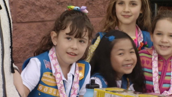 Girl Scout Troop 601-60 in San Jose had their cash box stolen on Feb. 22, 2015, but police were able to catch a suspect.