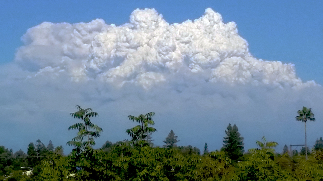 A giant pyrocumulus cloud seen above the King Fire, Wednesday afternoon, Sept. 17, 2014.