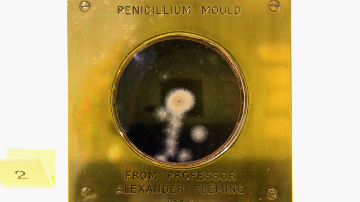 A sample of penicillin, one of the nominees for the greatest invention, is displayed at the Science Museum on November 4, 2009 in London, England.