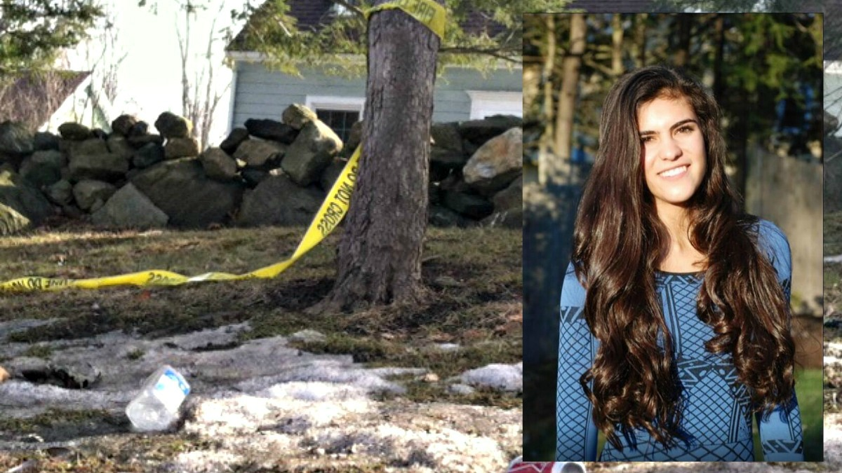 Seven teens and a 21-year-old have been charged in connection with the crash that killed 15-year-old Emma Sandhu in Ridgefield this past spring.