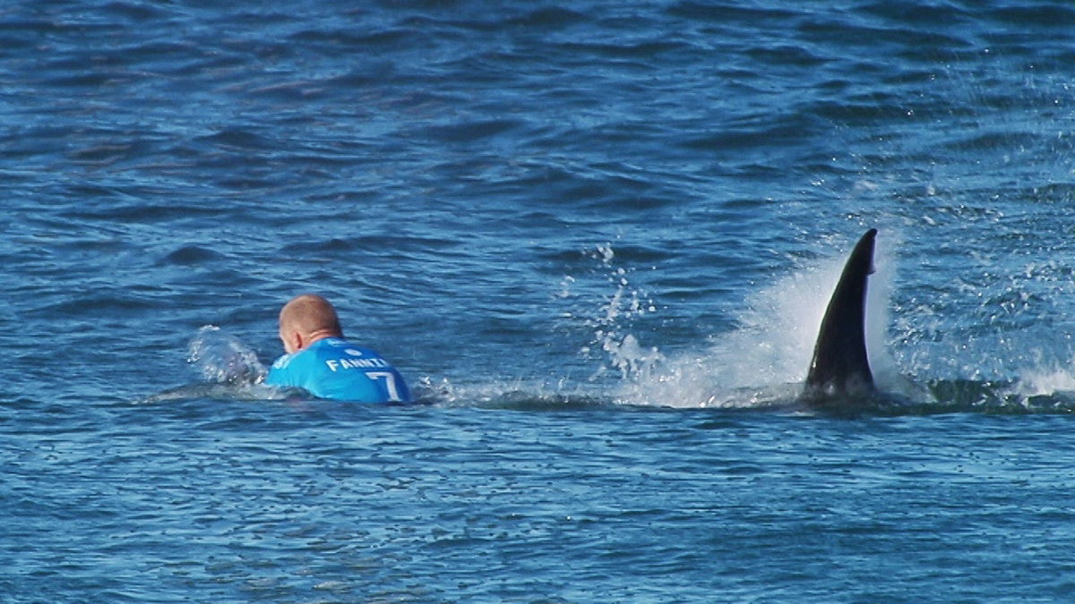 In this image made available by the World Surf League, Australian surfer Mick Flanning is pursued by a shark, in Jeffrey's Bay, South Africa,  Sunday, July 19, 2015. Knocked off his board by an attacking shark, a surfer punched the creature during the televised finals of a world surfing competition in South Africa before escaping. Fanning was attacked by a shark on Sunday during the JBay Open but escaped without injuries.