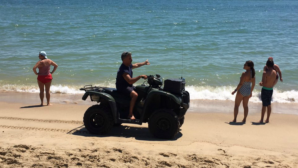 Swimmers were ordered out of the water on South Beach at Martha's Vineyard after a reported shark sighting.