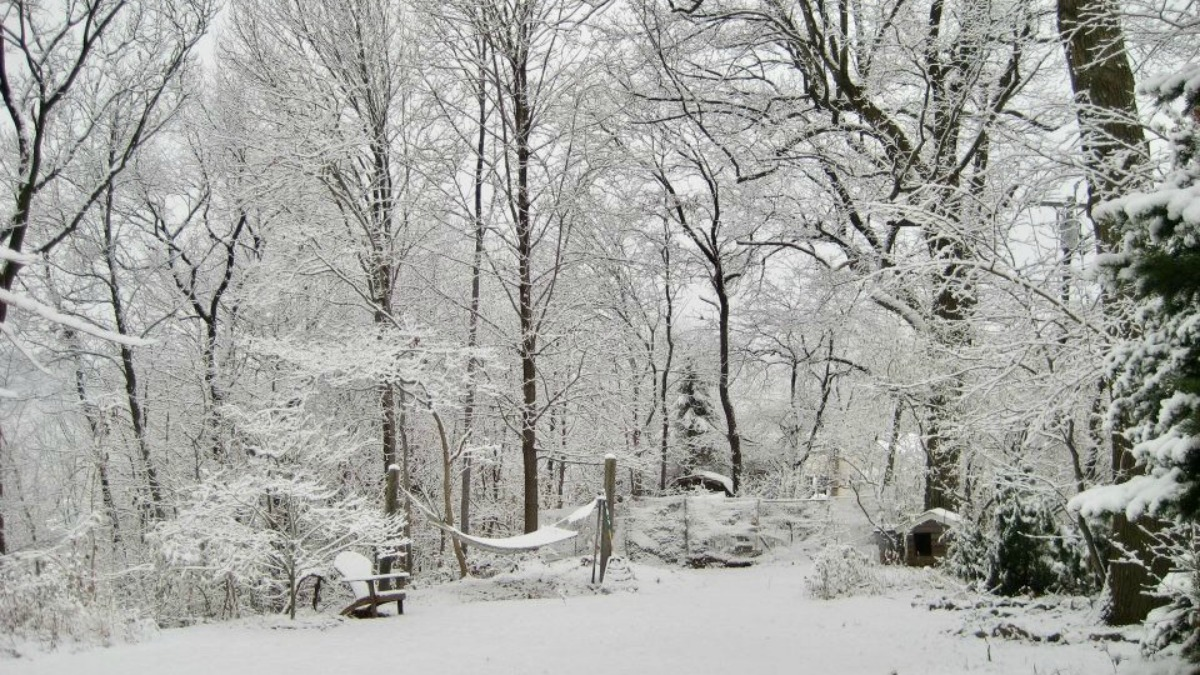 A storm brought several inches of snow to parts of Connecticut on Saturday.