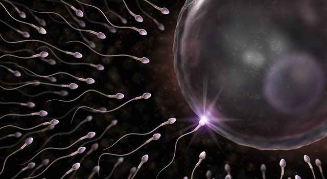 A bill before the California Legislature would allow some sperm donors to petition for paternal rights. A hearing before an Assembly committee is set for Tuesday, Aug. 13, 2013.