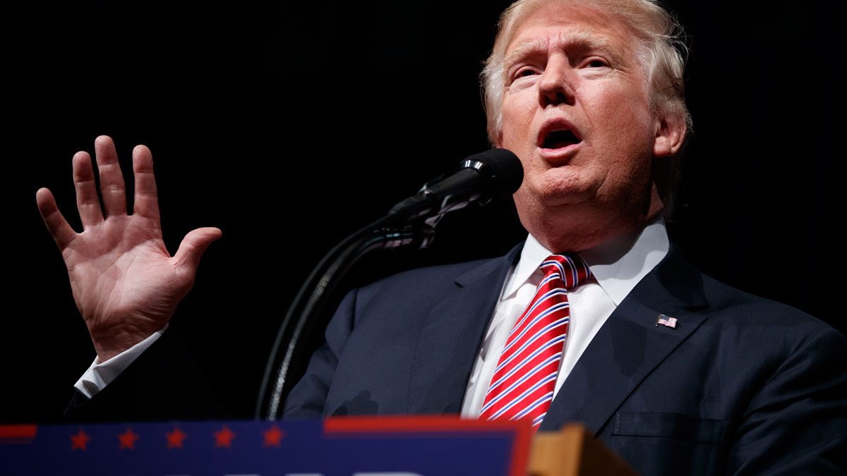 Republican presidential candidate Donald Trump speaks during a campaign rally at Briar Woods High School on Aug. 2, 2016, in Ashburn, Va. (AP Photo/Evan Vucci)